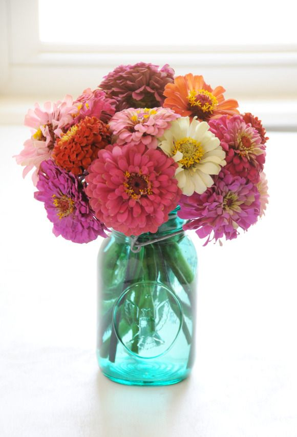 wedding Zinnias