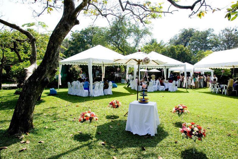 planning garden wedding