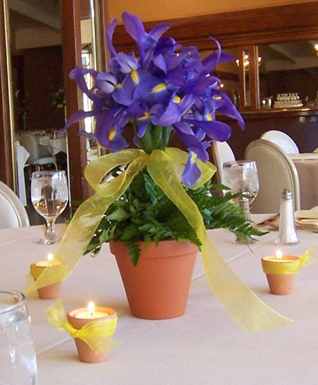 Iris Reception Topiary