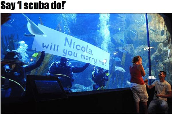 Scuba dive proposal