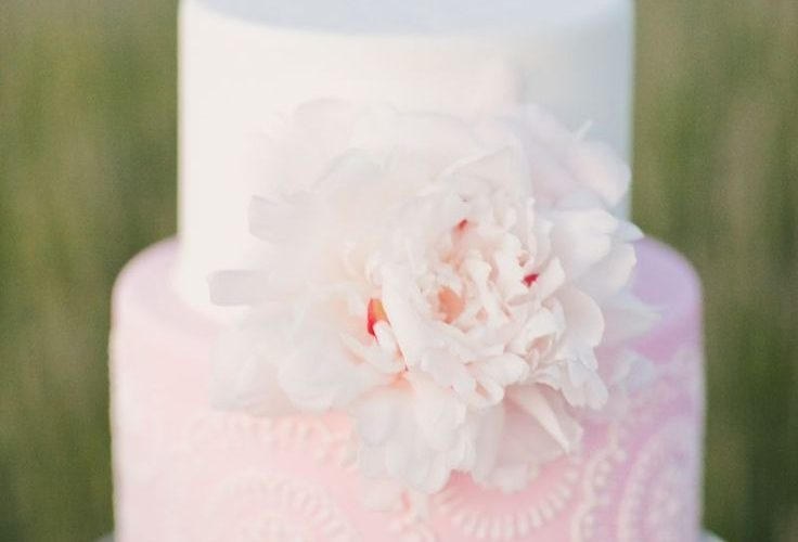 pink wedding cakes pictures
