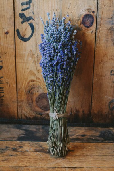 Lavender Bouquets Ideas