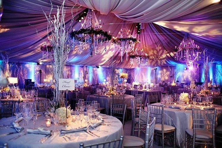 Princess Winter Wedding Themes