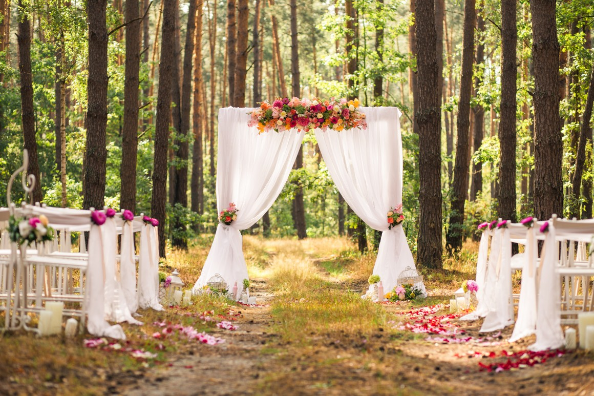 Beautiful forset wedding setting