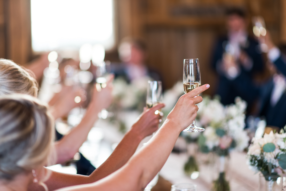 Wedding guests toast to the bride and groom