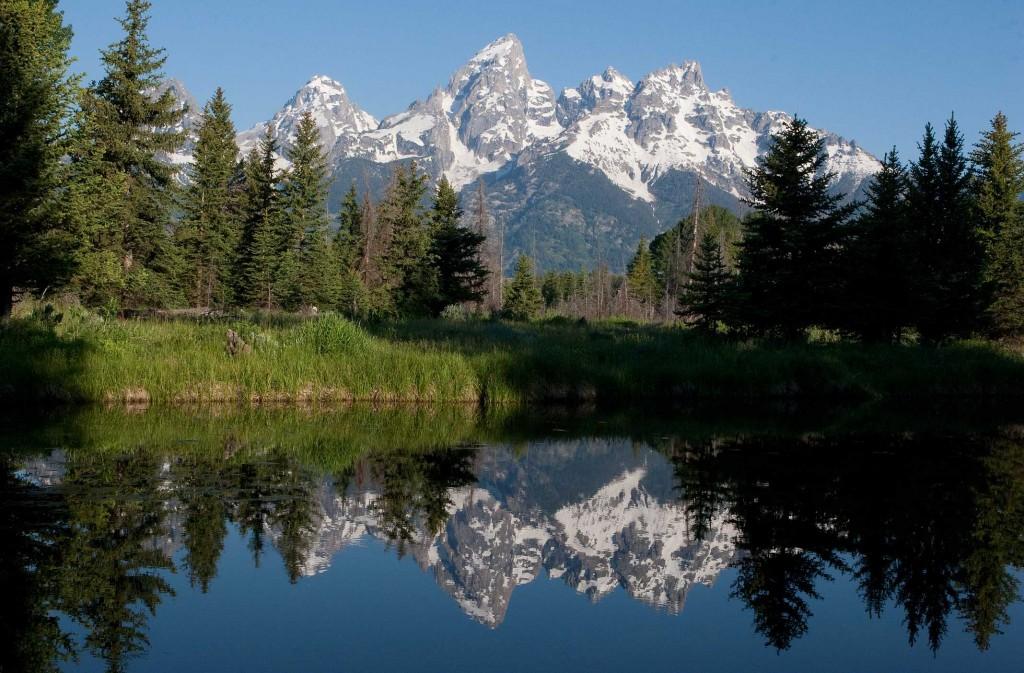 Jackson Hole Wyoming Honeymoon