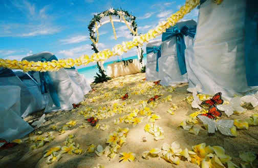 Ideas for Wedding Reception Themes - The Butterfly Theme