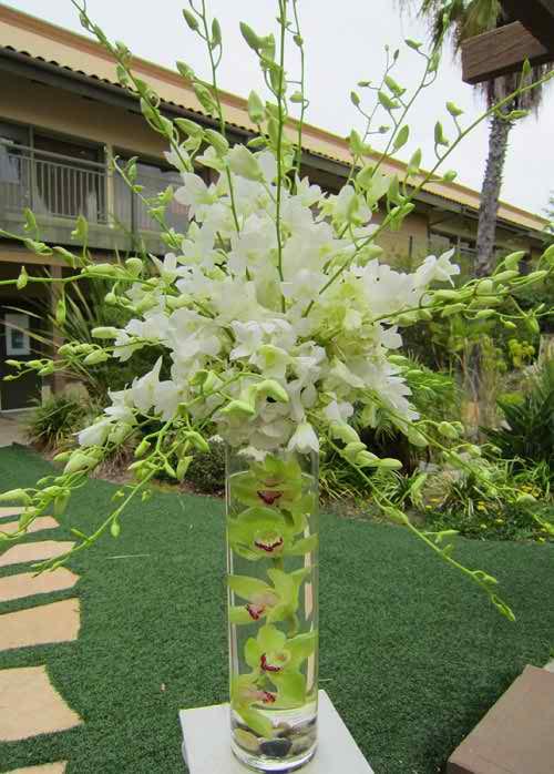 Ideas for a Tropical Wedding Reception Theme