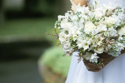 jasmine flowers at weddings 2