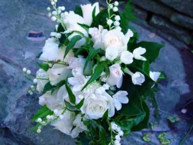 jasmine flowers at weddings