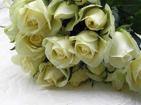 roses and weddings 3