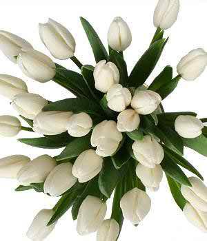 the minimalist wedding bouquet 3