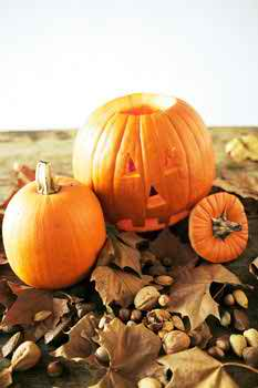 wedding Halloween themes 2