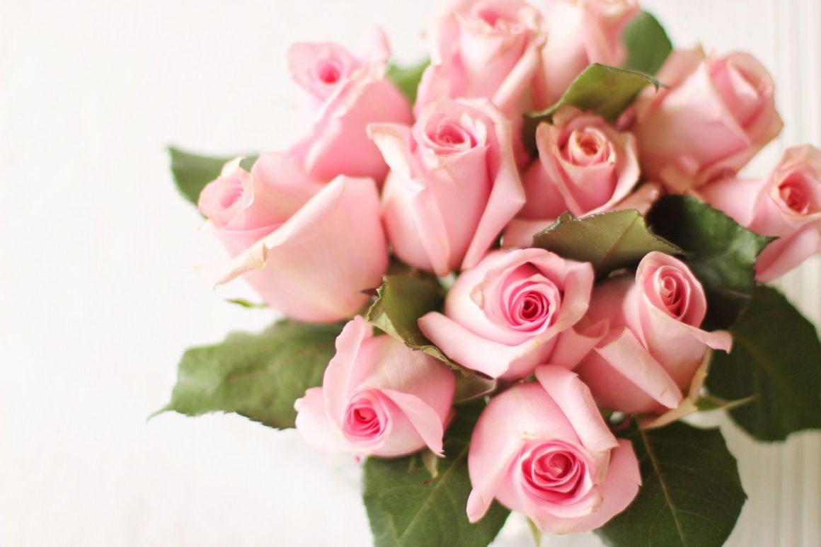 5 Wedding Shower Etiquette Questions | Bridal Party ...