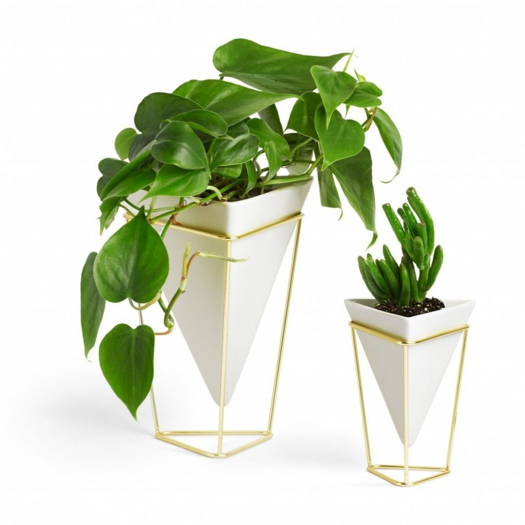 Umbra Trigg Geometric Desktop Vases
