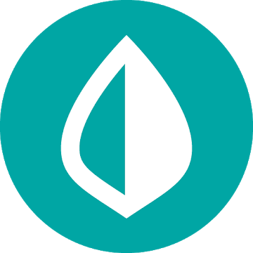 mint budget app