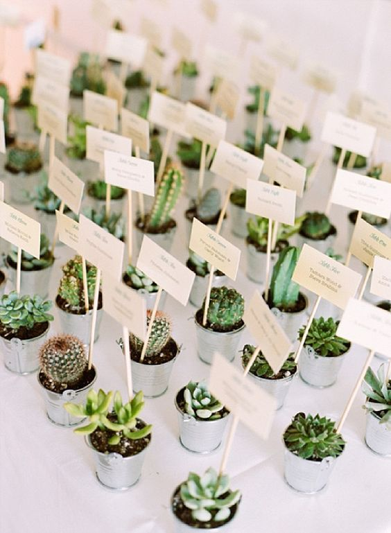 Succulent Seating Name Tags