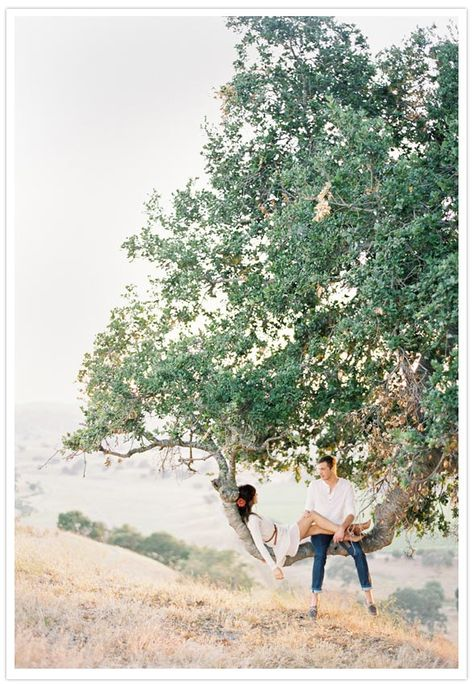 wedding photo in a tree